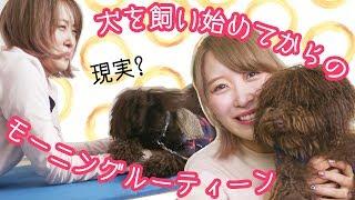 【朝の習慣】犬を飼い始めてからのモーニングルーティーンと朝の必須アプリ♡
