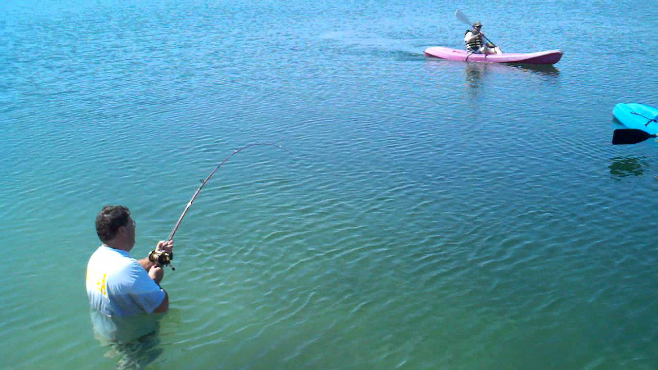 Fishing big catfish in silver lakes california helendale for Fishing lakes in southern california