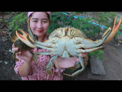 Yummy Mud Crab Cooking Glass Noodle – Mud Crab Recipe – Cooking With Sros