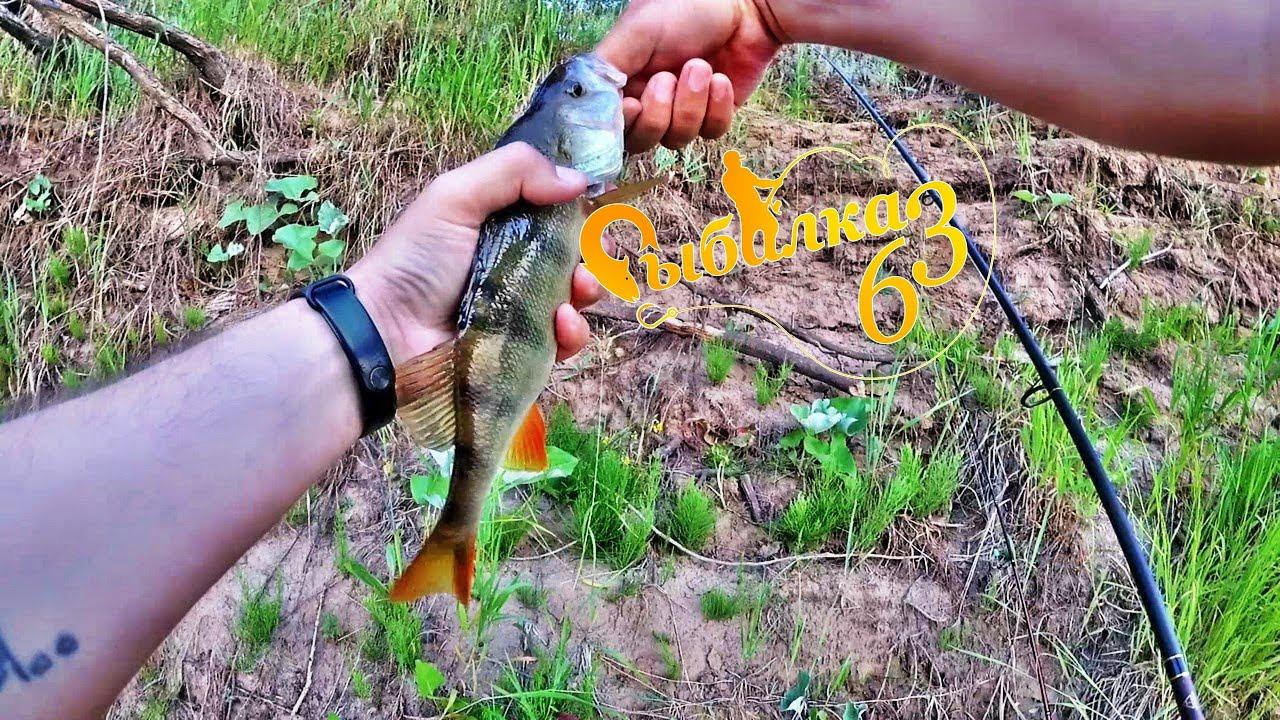 Зачетный окунь на отводной, рыбалка на спиннинг