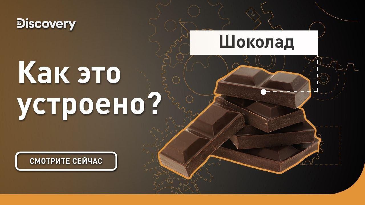 Шоколад   Как это устроено   Discovery