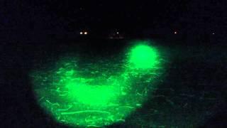 Led lenser T7 Green vs ArmyTek Green
