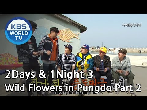 2 Days and 1 Night - Season 3 : Wild Flowers in Pungdo part 2 (2014.05.04)