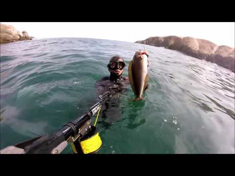 Pesca Submarina Mollendo - Perú