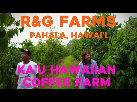 Kau Coffee / R&G Farms / Pahala, Island of Hawaii