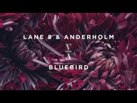 Lane 8 & Anderholm - Bluebird