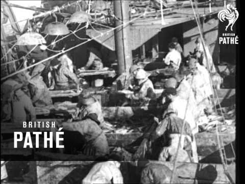 Toilers Of The Sea (1937)