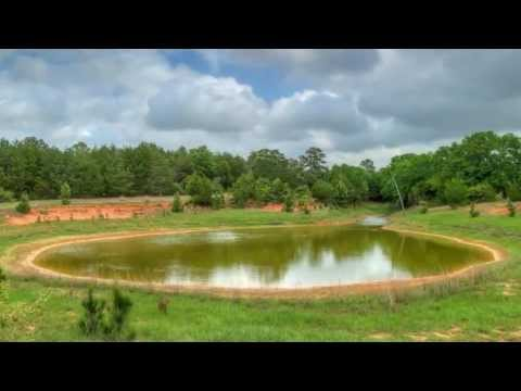 1168 Weishuhn, New Ulm, TX. 78950 ~ Real Estate For Sale