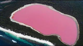 自然と野生動物   魅力的な大自然トップ8   オーストラリア政府観光局