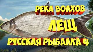 Русская Рыбалка 4 В поисках трофея Ловлю на Волхове