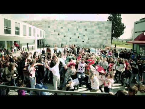 The Harlem Shake / Deutsche Schule Lissabon -  The whole school