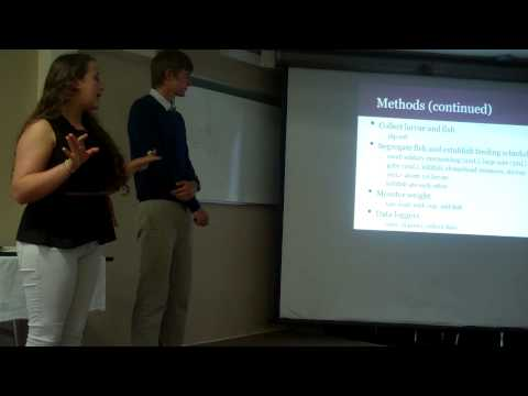 SEA S.T.A.R. Intern End of Summer Project Presentations - Th
