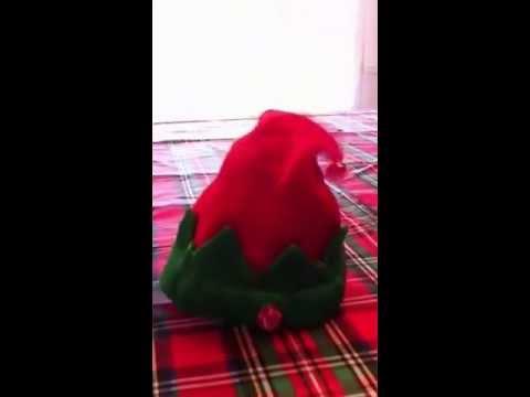 98c546ed7c8fe DanDee Animated Musical Dancing Santa Elf Hat - YouTube