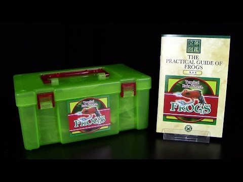 Colorata ® Tropical Rain Forest ® Frogs / Tropische Frösche - Teil 1 Unboxing / Re-Upload