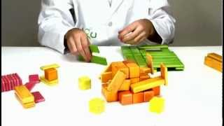 Wooden Building Blocks From Tegu - Building A Turkey
