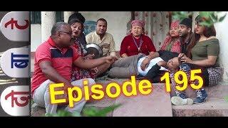 दोबाटे, भाग १९५   29th November 2018, Episode 195, Dobate Nepali Comedy Serial