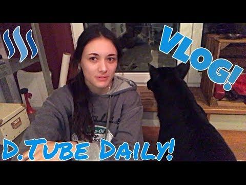 Vlog #71 - Chaotische Grüße aus Wien & ein kleiner Hund!// Seit 24 Stunden unterwegs...
