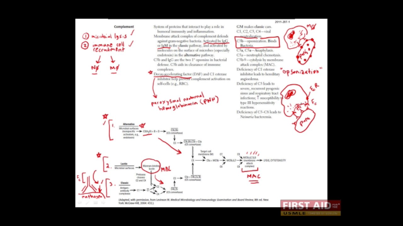 First Aid for the USMLE Step 1, IMMUNOLOGY + 09 = The complement cascade