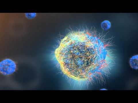 CumarGold - TVC - Hỗ trợ điều trị ung thư, viêm loét dạ dày -MN15s