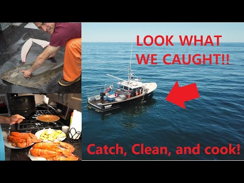 Maine Lobster Fishing - Maine Halibut Fishing - Catch, Clean, Cook! - Maine Salt Water Fishing #14