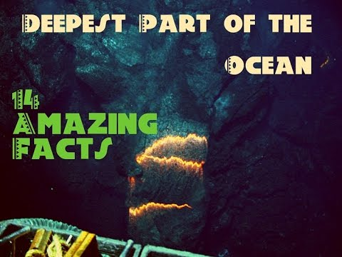 Deepest Part of The Ocean: 14 Amazing facts about the Mariana Trench