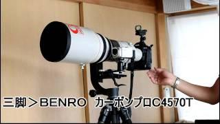カワセミ撮影機材 EOS1D EF600 カーボン三脚 ジンバル雲台 thumbnail