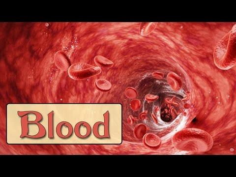 Easy Physiology | Blood | 1-Hemostasis & Coagulation Cascade