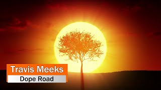 Travis Meeks (Days of the New) - Dope Road