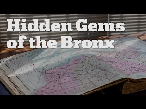 Hidden gems of the Bronx