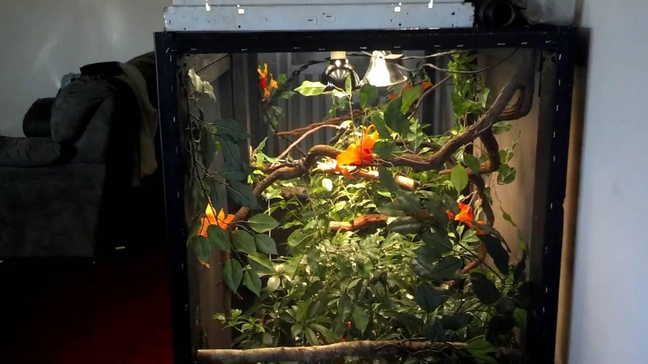 Custom chameleon cage - YouTube