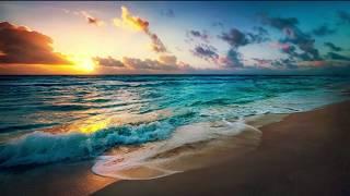 Alan Walker - Diamond Heart (feat. Sophia Somajo) lyrics