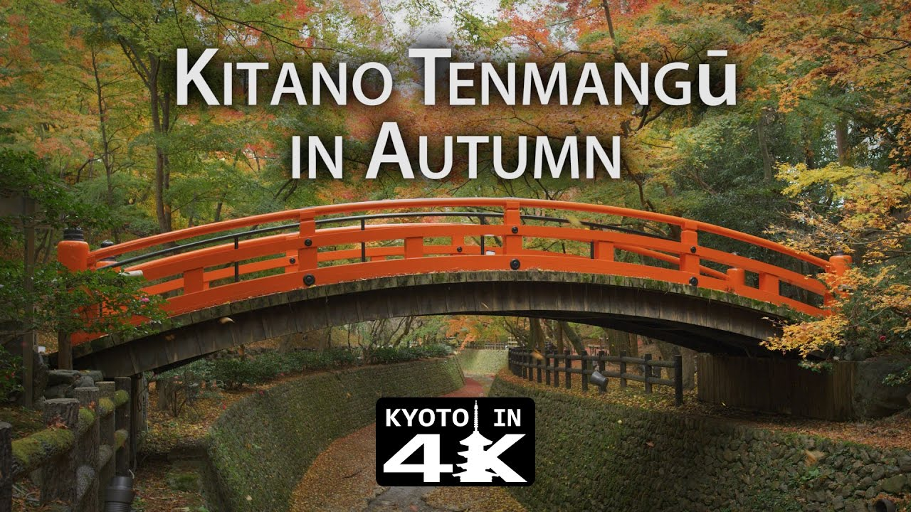 Beautiful Kyoto Autumn At Kitano Tenmangū K YouTube - This amazing image is being called the most beautiful photo of kyoto ever
