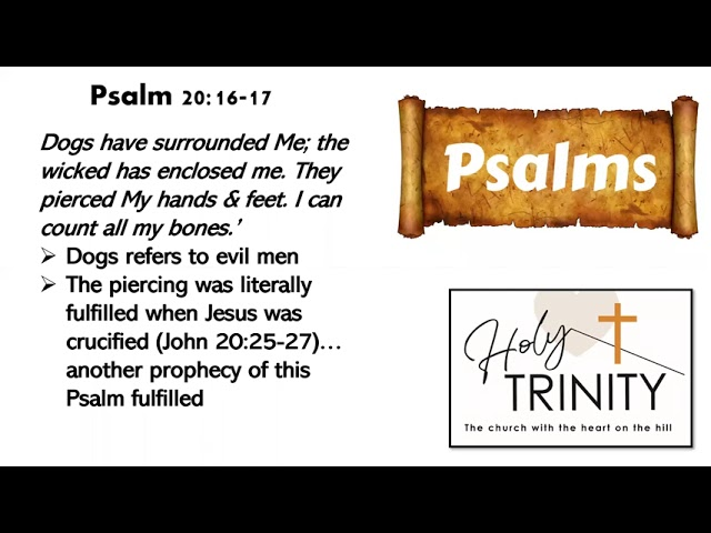 Bible Study on the Book of Psalms: Songs of the Heart: session 6