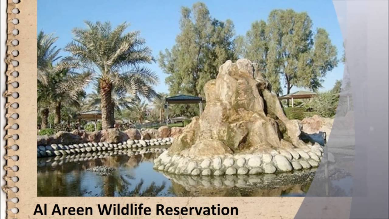 Bahrain: reviews of tourists, features of recreation, places of interest and attractions