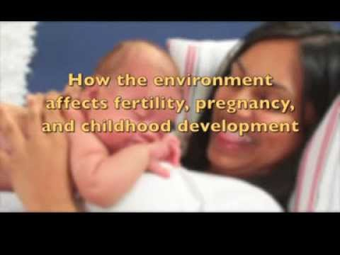 How the environment affects fertility, pregnancy, and childhood development