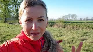 Sadzenie lasu w ogrodzie | Iwona Wierzbicka Vlog