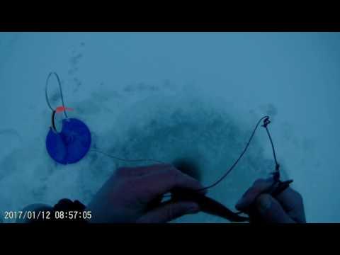 Рыбалка на щучьи капканы