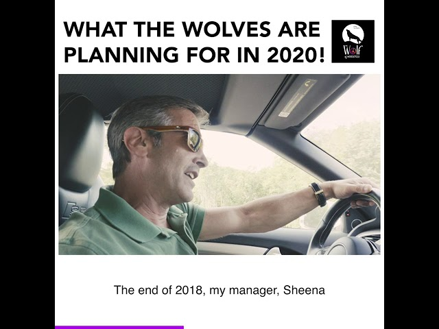 What The Wolves Are Planning For 2020