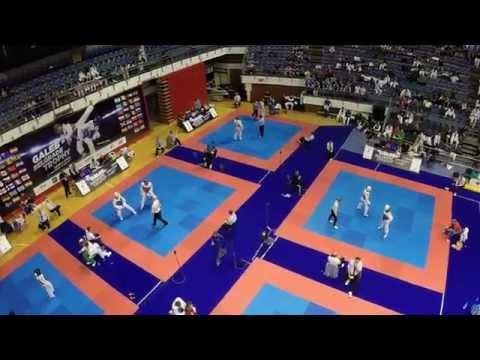 13. Galeb Belgrade Trophy 2014