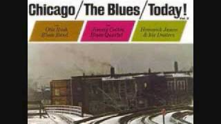 James Cotton - The Blues Keep Falling