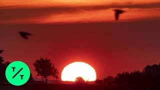 France, Germany Temperatures Top 100 Degrees as Heatwave Scorches Europe