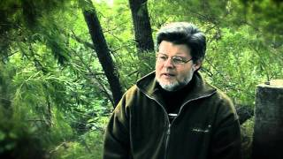 Tráfico de fauna: entrevista a Claudio Bertonatti (5ª y última parte).
