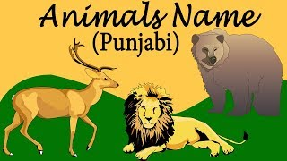 Punjabi Animals Name For Beginners   Matra & Vowels Learning   Pronounce The Words Catrack Kids