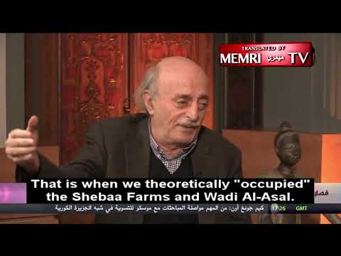 Lebanese Druze leader: Disputed Shebaa Farms not part of our country