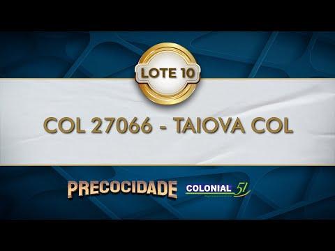 LOTE 10   COL 27066