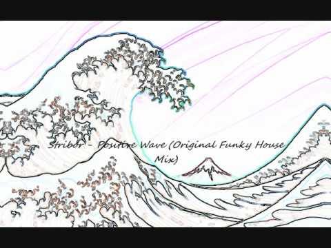 Stribor - Positive Wave (Original Funky House Mix)
