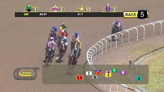 Vidéo de la course PMU PRIX OPEN MAIDEN
