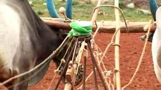 Indigenous Agricultural Implements