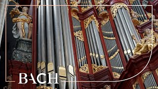 Bach - Sonata No. 3 in D minor BWV 527 - Havinga | Netherlands Bach Society