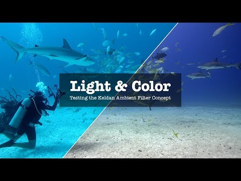 HOW TO GET THE COLOR RIGHT WHEN FILMING UNDER WATER?